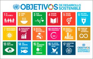 Cuadro ODS